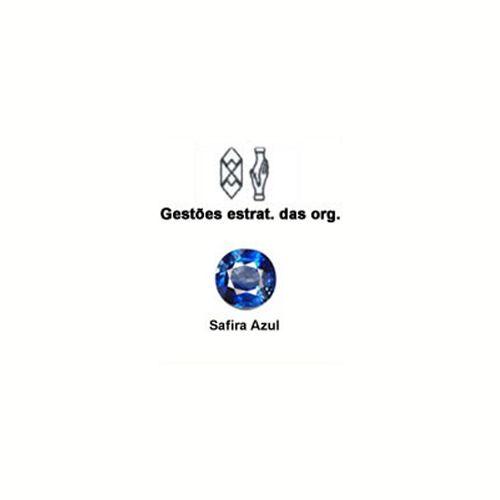 Gestoes_Estrat_Organ