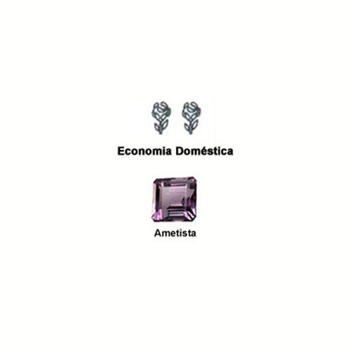 Curso-Economia-Domestica