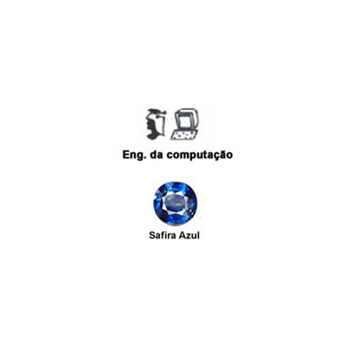 Curso-Eng-Computacao