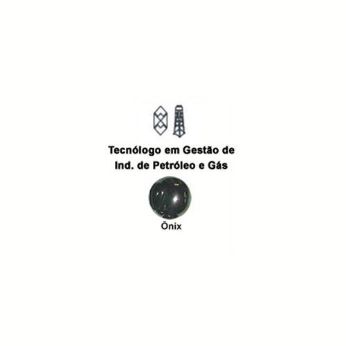 Tecn_Petroleo_e_Gas